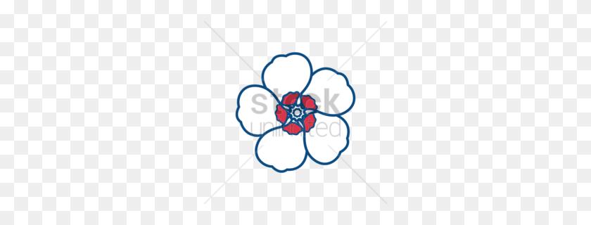 Download Hibiscus Syriacus Clip Art Clipart Common Hibiscus Clip Art - Poppy Clipart