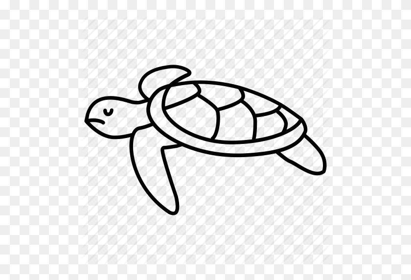 Download Sea Turtle Icon Png Clipart Modern Sea Turtles Clip Art - Sea Turtle Clipart