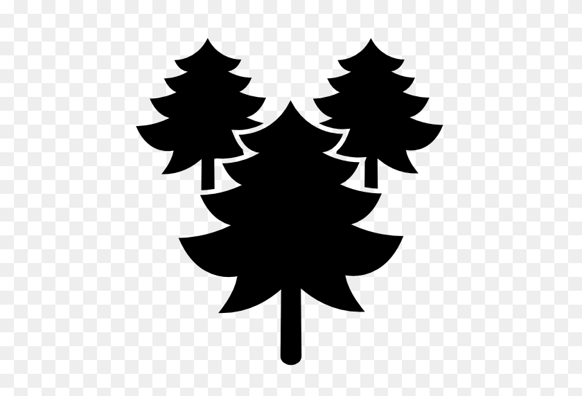 Download Three Pine Tree Png Image For Designing Projects - Pine Tree PNG