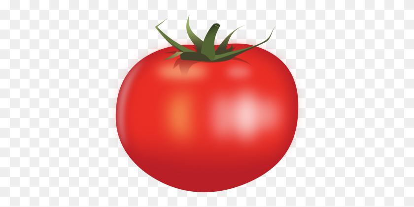 Download Tomato Free Png Transparent Image And Clipart - Tomato Slice PNG
