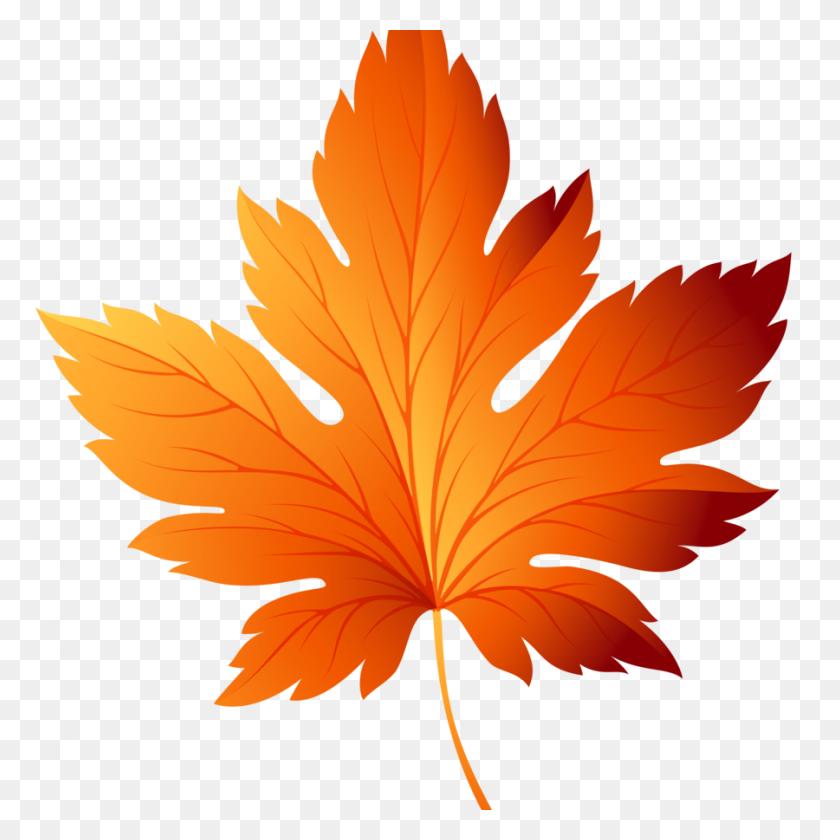 Download Transparent Autumn Leaves Clipart Autumn Leaf Color Clip - Tree Without Leaves Clipart