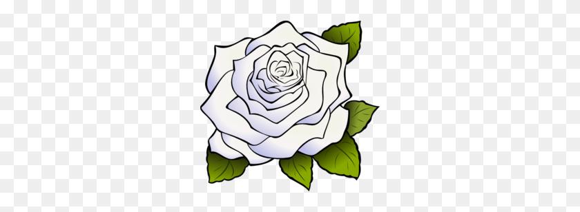 Download White Rose Png Clipart Clip Art Rose, Flower, Plant - Rose Bouquet Clipart