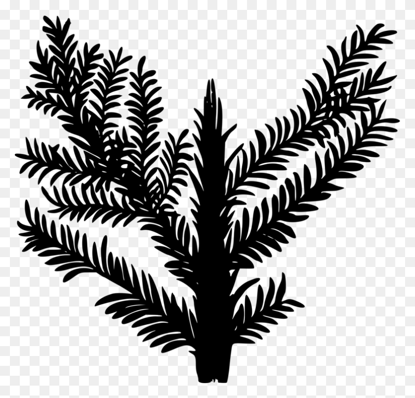 Drawing Encapsulated Postscript Computer Icons Palm Trees Plants - Palm Branch Clip Art