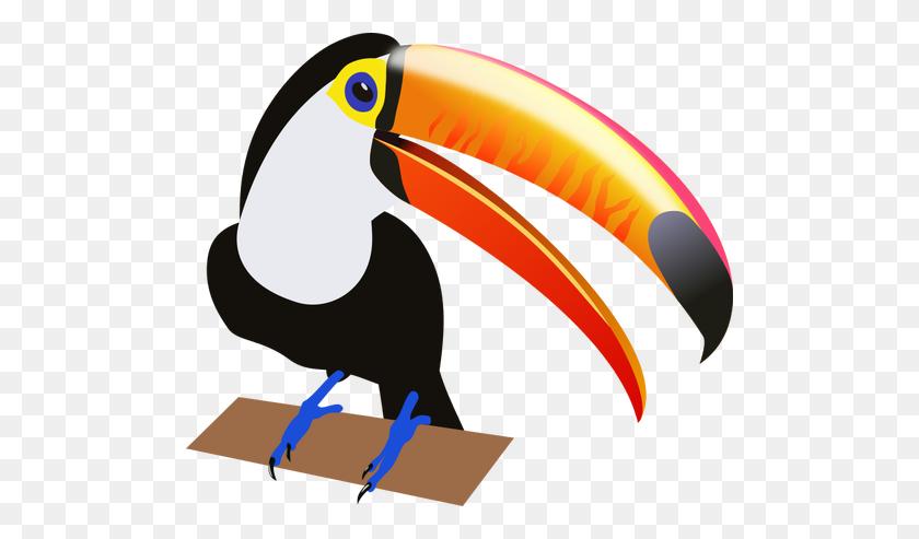 Drawing Of A Tropical Bird - Tropical Bird Clipart