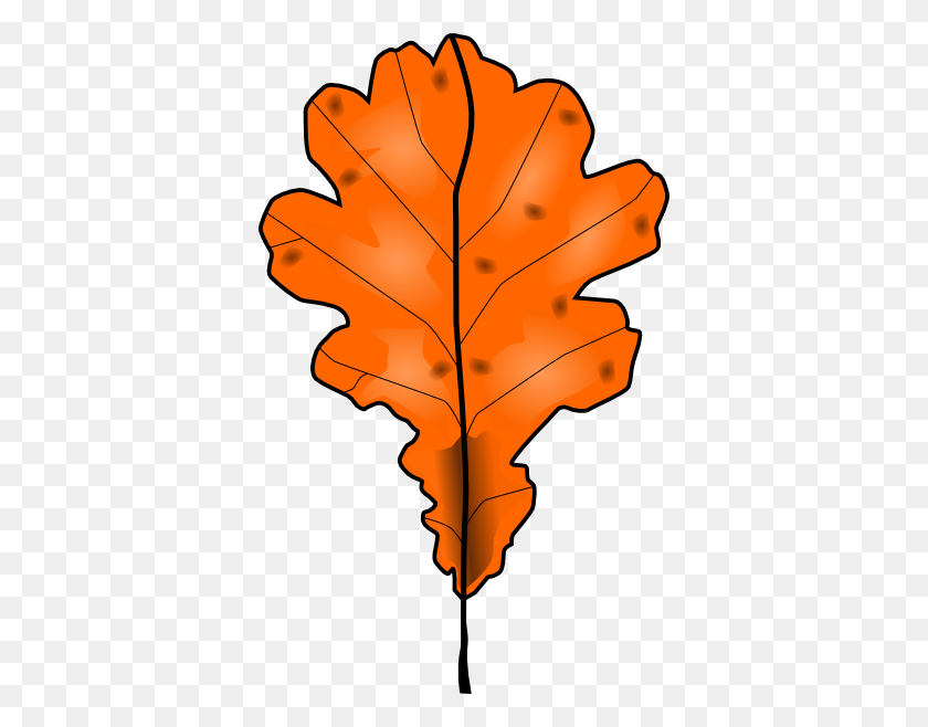 Tree Leaf Find And Download Best Transparent Png Clipart Images At