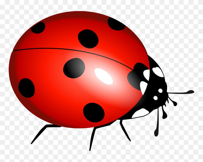 Drawn Mosquito Ladybug - Mosquito Clip Art