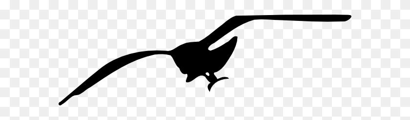 Drawn Seagull Vector - Sandpiper Clipart