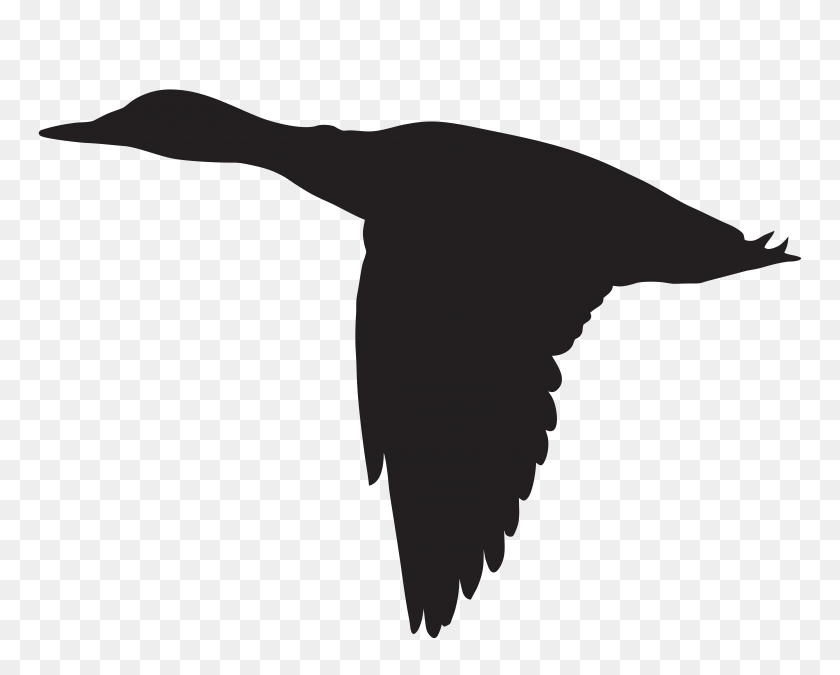 Duck Flying Silhouette Png Clip Art - Free Duck Clipart
