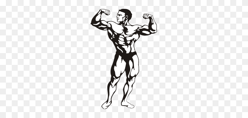 Weightlifter Drawing Strength Training Transparent - Weightlifting Png,  Cliparts & Cartoons - Jing.fm