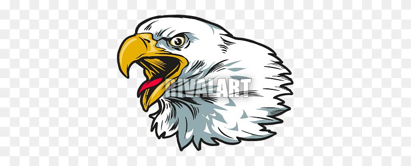 Eagle Head Clip Art Look At Eagle Head Clip Art Clip Art Images - Eagle Eye Clipart