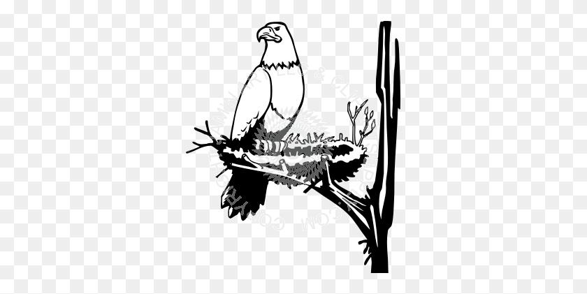 Eagle Nest Clipart Clip Art Images Philadelphia Eagles Clipart