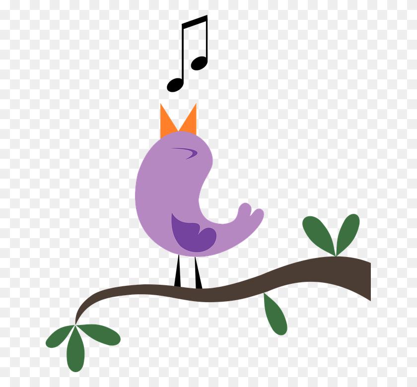 Earbird - Bird Watching Clipart
