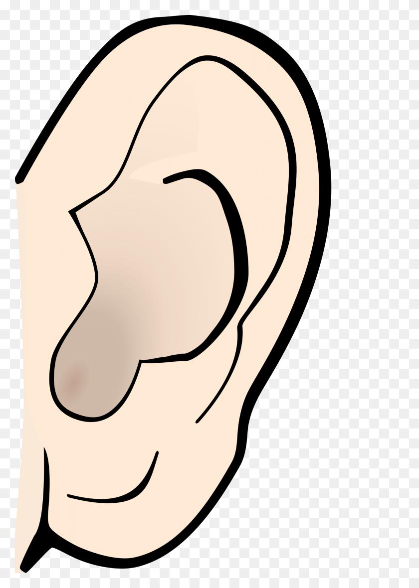 1671x2400 Ears Clip Art - Taking A Test Clipart