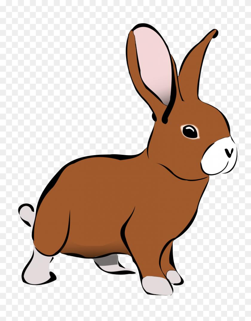 Pictures Bunny Hop Clip Art, - Hopping Rabbit Clip Art - Free Transparent  PNG Clipart Images Download