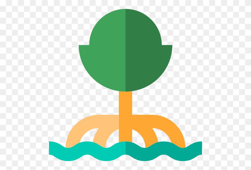 Ecology, Botanical, Beech, Nature, Tree Icon - Mangrove Clipart