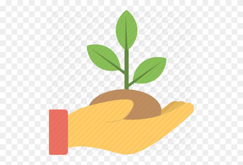 Ecology Concept, Green Foliage, Greenery, Leaves, Mint Leaf, Tree - Mint Leaf Clip Art