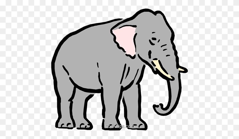 Elefante Find And Download Best Transparent Png Clipart Images