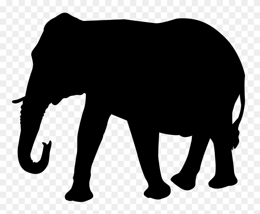 8000x6490 Elephant Silhouette Png Transparent Clip Art Gallery - Free Elephant Clipart
