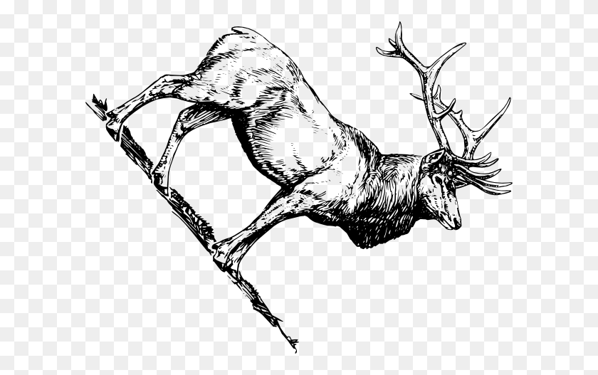 Elk Clip Art Black And White - Elk Clipart Black And White