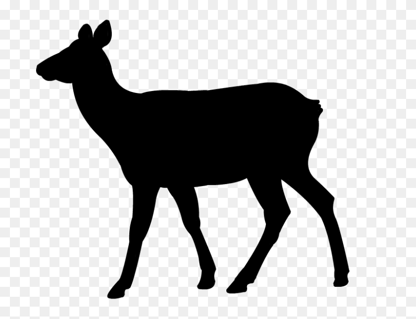 Elk Clipart Elk Head - Zebra Head Clipart