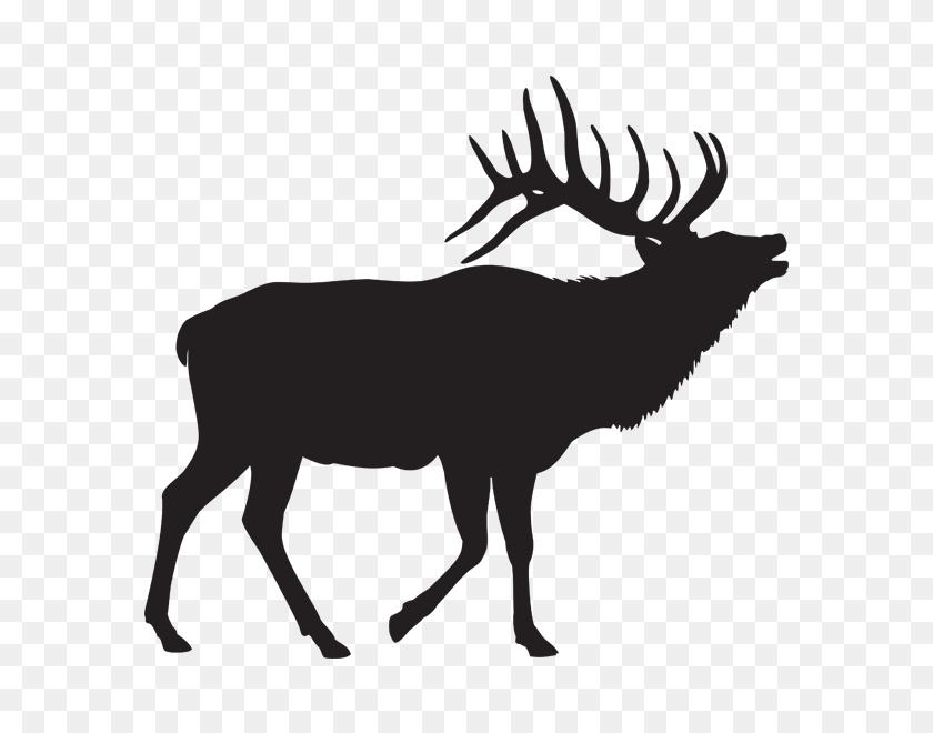 Elk Clipart Elk Hunting, Elk Elk Hunting Transparent Free - Antler Clip Art