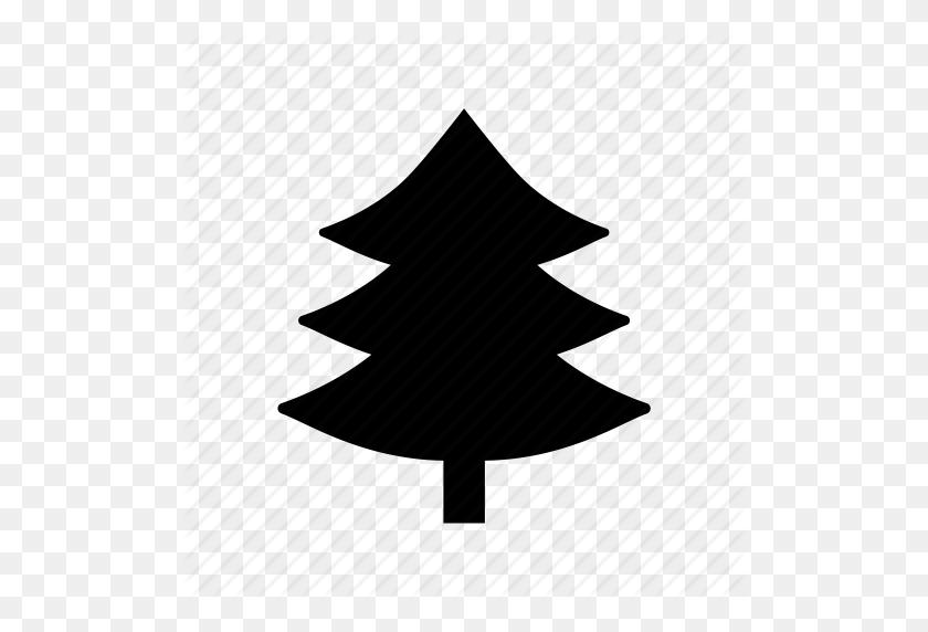 Evergreen Tree, Fir Tree, Pinetree, Tree, True Pine Icon - Evergreen Tree PNG