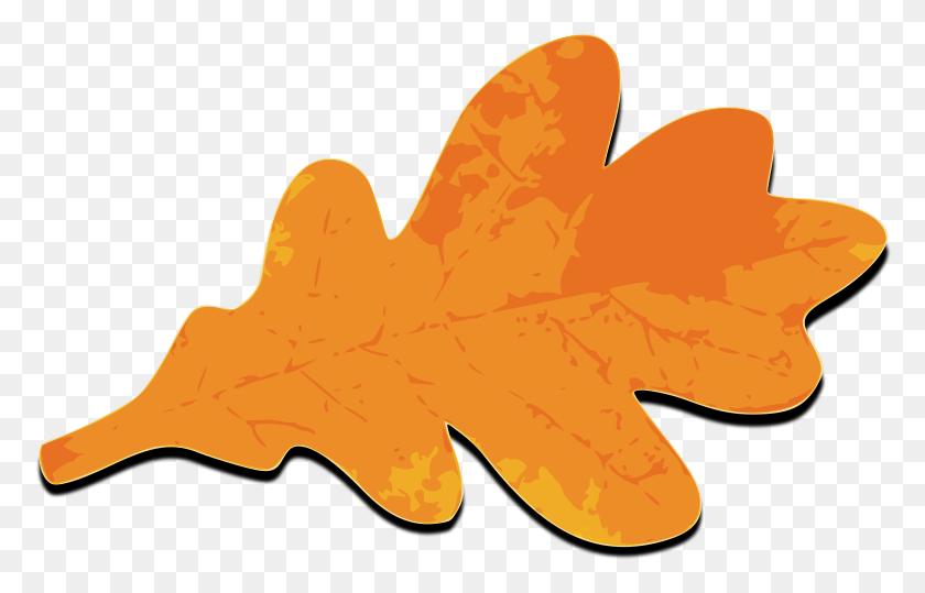 Fall Leafs Orange Png Images - Oak Leaf PNG