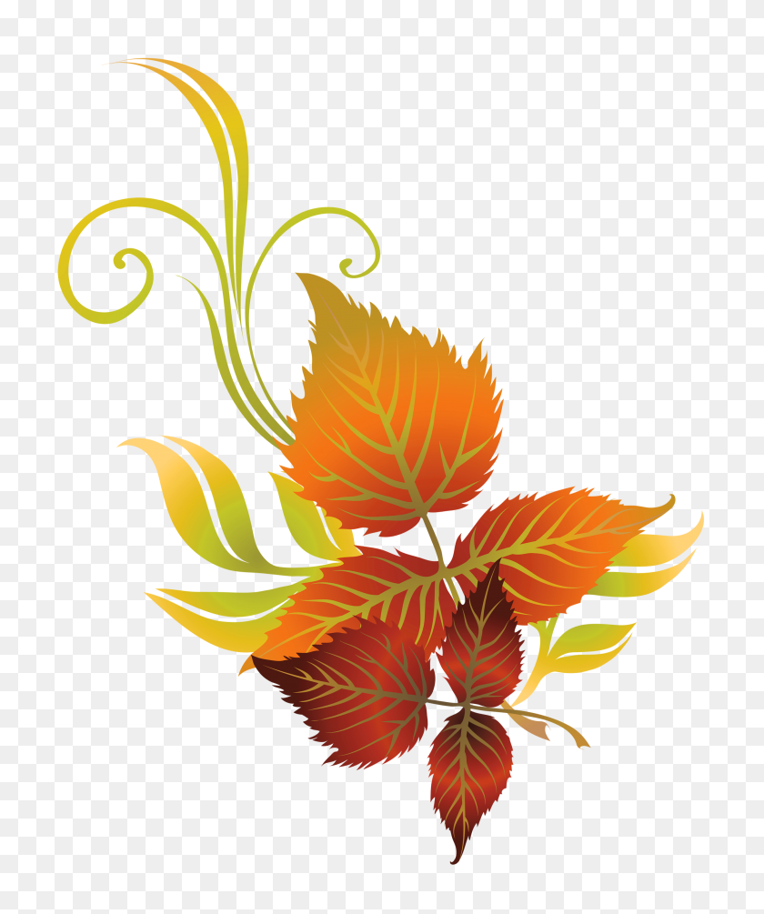 2779x3370 Fall Leaves Clip Art - Magnolia Flower Clip Art