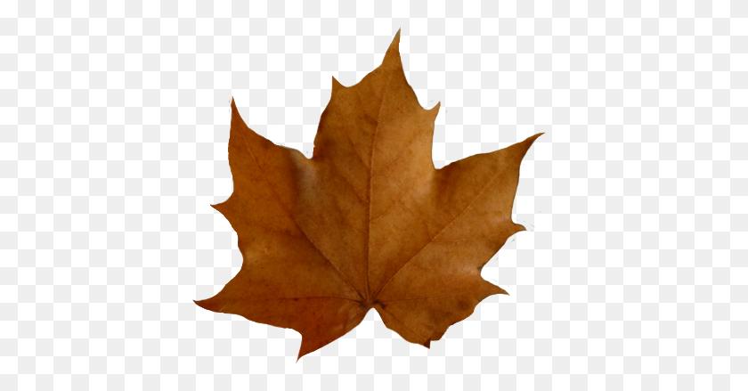 409x379 Fall Leaves Clip Art - Maple Leaf Clipart