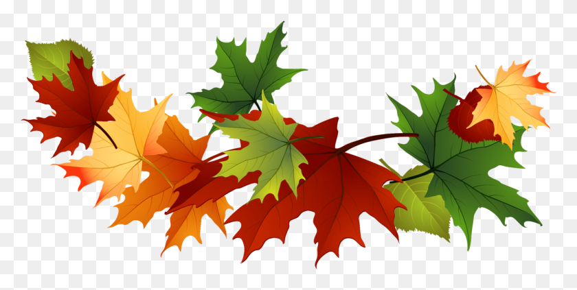 1281x597 Fall Leaves Clip Art Free Fall Transparent Leaves - Maple Tree Clipart