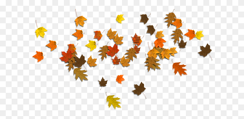 Falling Autumn Leaves Png Image Background Png Arts - Leaves Falling PNG