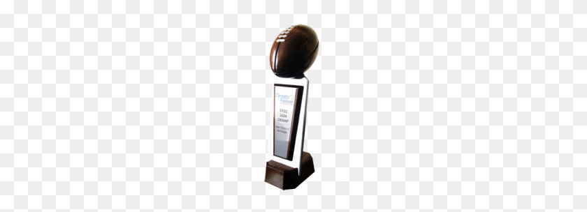244x244 Fantasy Football Trophies Paradise Awards - Lombardi Trophy PNG