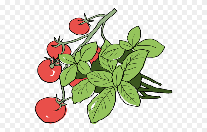 Farmbrothers Sharing The Good Stuff! - Palm Branch Clip Art