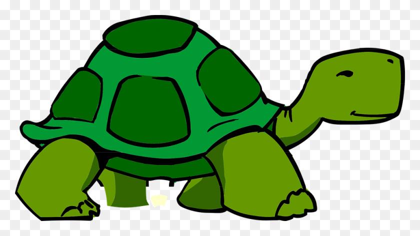 960x508 Feet Clipart Turtle - Monster Feet Clipart