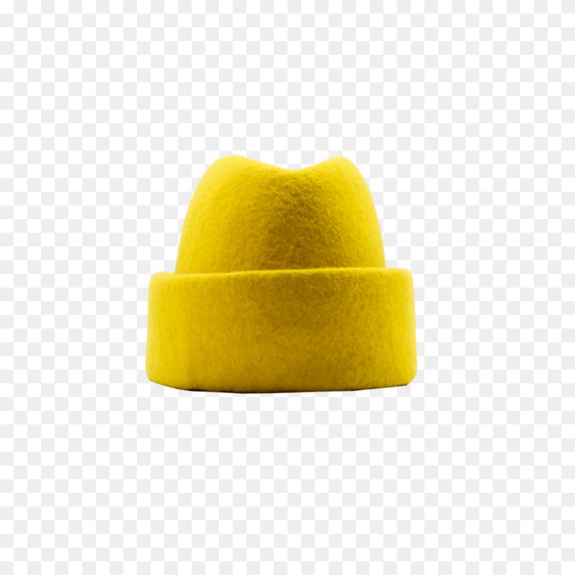 Fez Hat Vector & Photo (Free Trial)   Bigstock