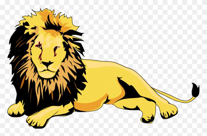 800x505 Fierce Lion Clipart - Saber Tooth Tiger Clipart
