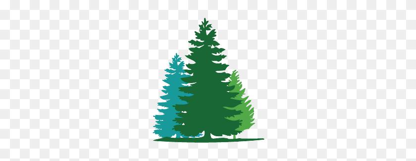Charlie Brown Christmas Tree Silhouette.Fir Tree Clipart Charlie Brown Christmas Tree Clip Art