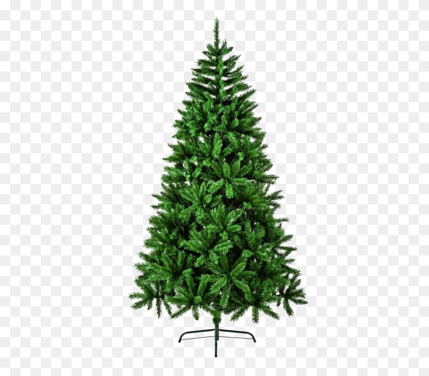 Fir Tree Download Png Image Png Arts - Fir Tree PNG