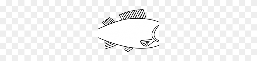 Fish Clipart Outline Easy Long Fish Drawings Fish Outline Clip - Fish Clipart Outline