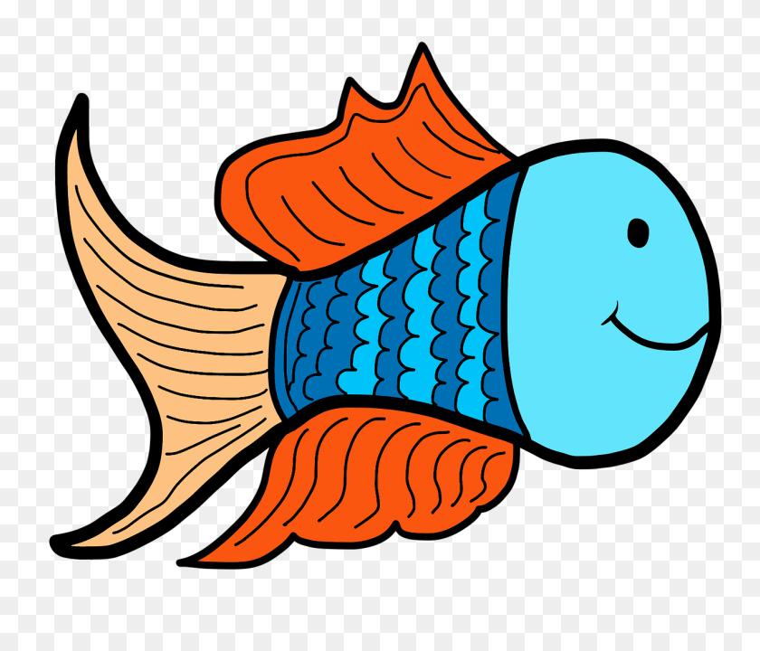 Fish, Water, Pond, Animals, Background - Pond Animals Clipart