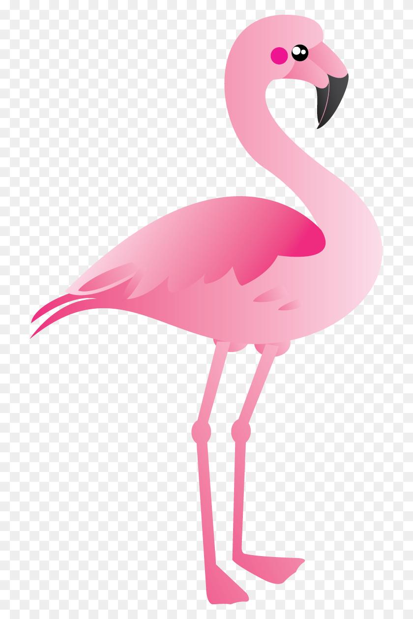 Flamingo Clip Art Free - Cute Bird Clipart