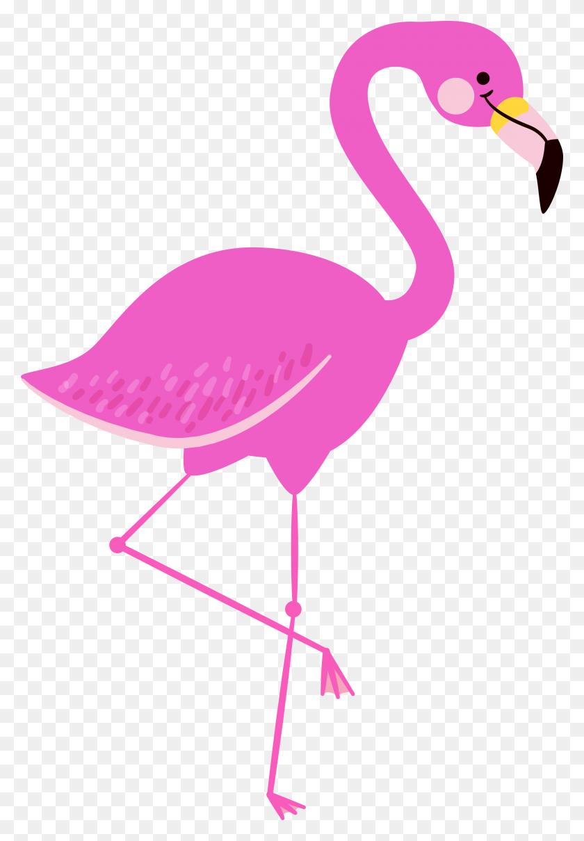 Flamingo Clipart Cool Cute Borders Vectors Animated Black ...