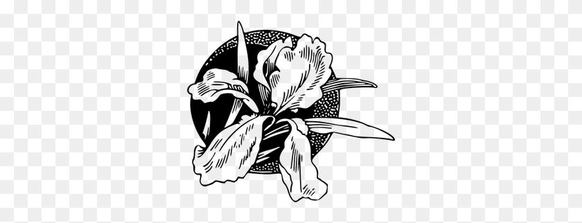 300x262 Floral Border Clip Art Black White - Megaphone Clipart Black And White