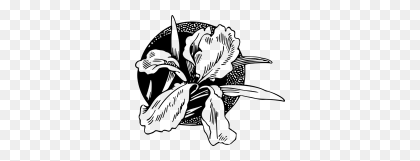 Floral Border Clip Art Black White - Nature Clipart Black And White