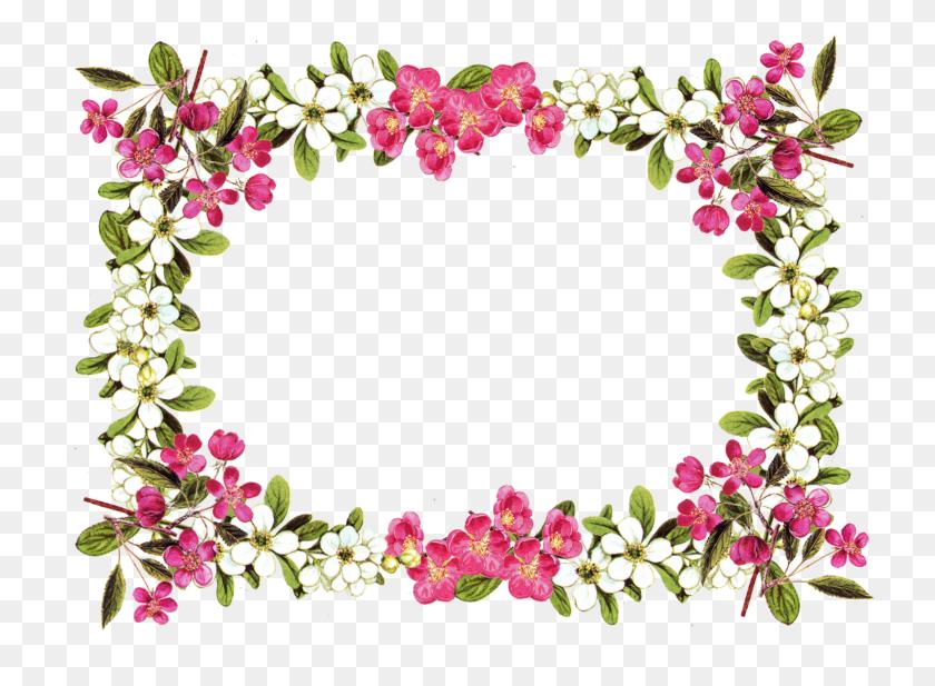 Flower Border Clipart Flower Border Clip Art Digital Flower - Spring Flower Border Clipart