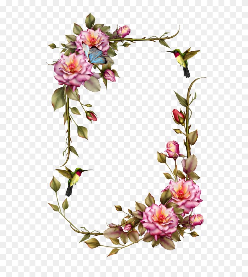 Flower Border Clipart Transpa Flower Background Clipart