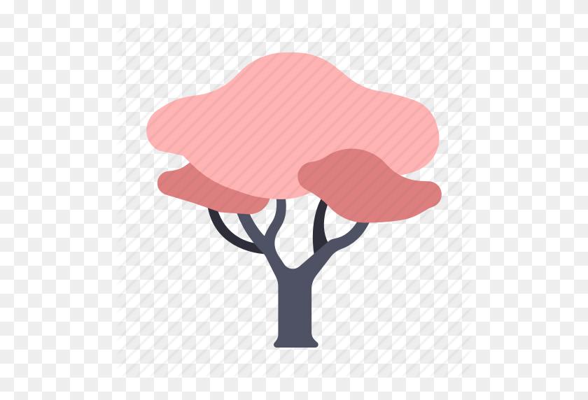 Flower, Japan, Nature, Sakura, Sakura Tree, Spring, Tree Icon - Sakura Tree PNG