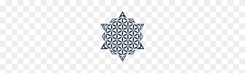 190x190 Flower Of Life, Sacred Geometry - Sacred Geometry PNG
