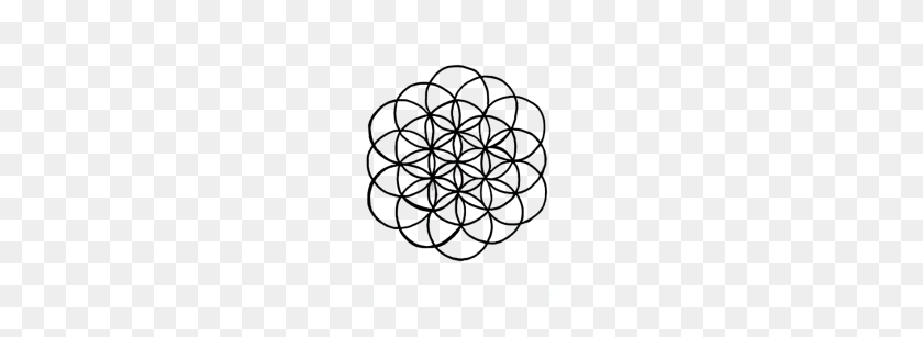 190x247 Flower Of Life Sacred Geometry - Sacred Geometry PNG