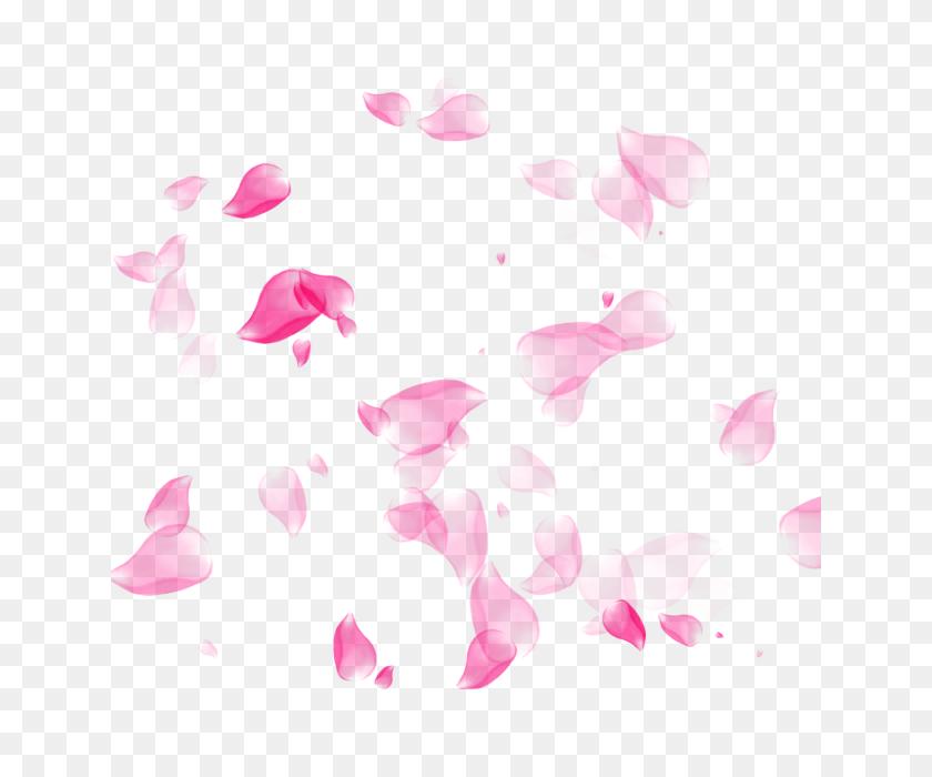 Flower Petal, Flower, Petal Png And For Free Download - Rose Petal PNG